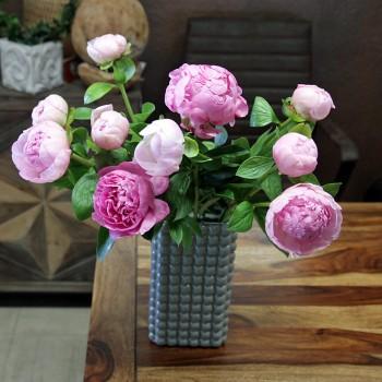 XXL Pfingstrosen rose