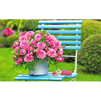 Grußkarte Rosen Motiv